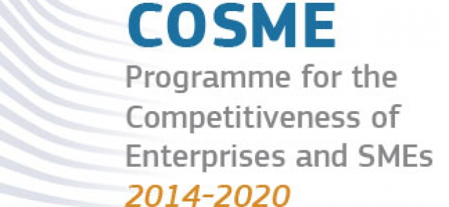 """""""Як бізнесу скористатися програмою CoSME"""""""